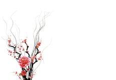 Bloemen met takken Stock Foto's