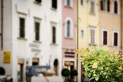 Bloemen met vage huizen Royalty-vrije Stock Afbeelding