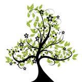 Bloemen mooie boom Stock Afbeeldingen