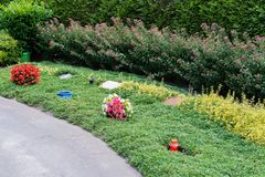 Bloemen na een begrafenis in een oude begraafplaats royalty-vrije stock foto's