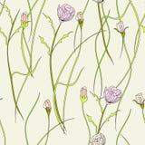 Bloemen naadloos behang Stock Fotografie