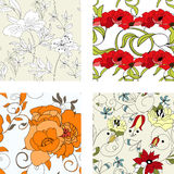 Bloemen naadloos patroon. Royalty-vrije Stock Foto's