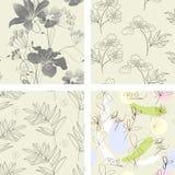 Bloemen naadloos patroon. Stock Afbeelding