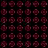 Bloemen naadloos patroon als achtergrond Royalty-vrije Stock Fotografie
