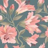 Bloemen naadloos patroon De achtergrond van de bloem Bloei behang w Royalty-vrije Stock Foto