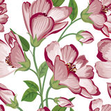 Bloemen naadloos patroon De achtergrond van de bloem Bloei textuur met bloemen Royalty-vrije Stock Fotografie