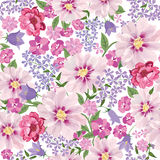 Bloemen naadloos patroon De achtergrond van de bloem Bloemen naadloze tekst Stock Afbeelding