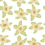 Bloemen naadloos patroon Hand getrokken abstracte gradiëntbloemen met krabbeldecoratie Kleurrijk artistiek ontwerp Het kan worden royalty-vrije illustratie