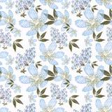 Bloemen naadloos patroon, leuke bloemen witte achtergrond Stock Afbeeldingen