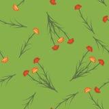 Bloemen naadloos patroon met anjer Royalty-vrije Stock Foto