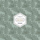 Bloemen naadloos patroon met boombladeren Esdoorn, Iep, Eik, Esp stock illustratie