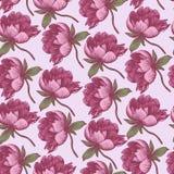 Bloemen naadloos patroon met hand getrokken pioenen Royalty-vrije Stock Afbeeldingen