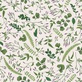 Bloemen naadloos patroon met kleine installaties stock illustratie