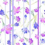 Bloemen naadloos patroon met krokusbloemen en strepen voor stof, kledingsontwerp Royalty-vrije Stock Afbeeldingen
