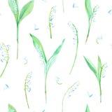 Bloemen naadloos patroon met lelietje-van-dalenbloemen Stock Foto