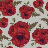 Bloemen naadloos patroon met rode papavers Stock Foto