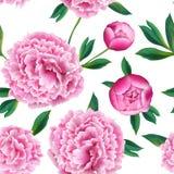 Bloemen Naadloos Patroon met Roze Pioenbloemen De lente Bloeiende Achtergrond voor Stof, Drukken, Huwelijksdecoratie royalty-vrije illustratie