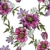 Bloemen naadloos patroon met waterverfpioenen, jasmijn en tulpen Stock Afbeelding