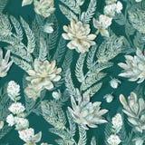 Bloemen naadloos patroon Succulents, varens, doornen Royalty-vrije Stock Foto