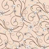 Bloemen naadloos vectorpatroon Royalty-vrije Stock Foto's