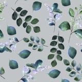 Bloemen naadloos waterverfpatroon met bloeiende snowberry takjes en groene takjes stock illustratie