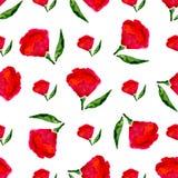 Bloemen naadloos waterverfpatroon Vector heldere rode bloemen op witte achtergrond Vectortextuur voor stof, druk, textielenz. Royalty-vrije Stock Foto