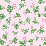 Bloemen naadloze achtergrond. de bloem nam patroon toe. stock illustratie