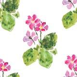 Bloemen naadloze achtergrond, vectorillustratie Stock Afbeelding