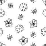 Bloemen naadloze achtergrond, vectorillustratie Royalty-vrije Stock Foto