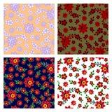 Bloemen naadloze patroneninzameling vector illustratie