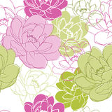 Bloemen naadloze textuur. Royalty-vrije Stock Afbeelding