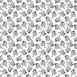 Bloemen naadloze zwart-wit achtergrond Stock Foto