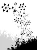 Bloemen Ontwerp Royalty-vrije Stock Afbeelding