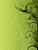 Bloemen ontwerp Stock Foto
