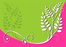 Bloemen ontwerpachtergrond Stock Afbeeldingen