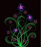 Bloemen ontwerpelement Royalty-vrije Stock Afbeelding