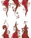 Bloemen ontwerpelement Royalty-vrije Stock Foto