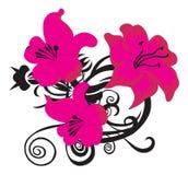 Bloemen ontwerpelementen Royalty-vrije Stock Afbeelding