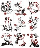 Bloemen ontwerpelementen Royalty-vrije Stock Foto's