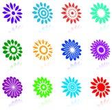 Bloemen ontwerpinzameling Stock Afbeelding