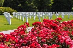 Bloemen op begraafplaats Stock Foto's