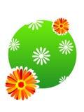Bloemen op cirkel Royalty-vrije Stock Afbeelding