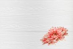 Bloemen op de houten vloer stock fotografie