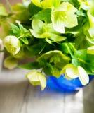 Bloemen op de lijst Stock Foto