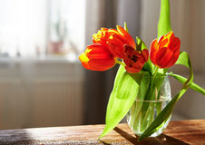 Bloemen op de lijst Royalty-vrije Stock Afbeelding