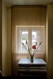 Bloemen op de lijst door het venster Stock Fotografie