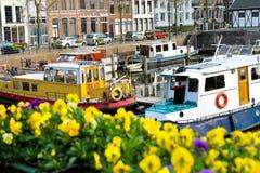 Bloemen op de straten van Gorinchem Royalty-vrije Stock Afbeeldingen