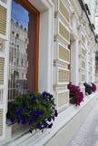Bloemen op de vensters Royalty-vrije Stock Foto