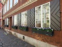 Bloemen op de vensters. Royalty-vrije Stock Foto's