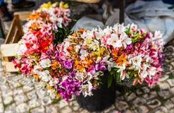 Bloemen op de vuile vloer van een vlooienmarkt, Olhao, Albufeira, Portugal Royalty-vrije Stock Afbeeldingen